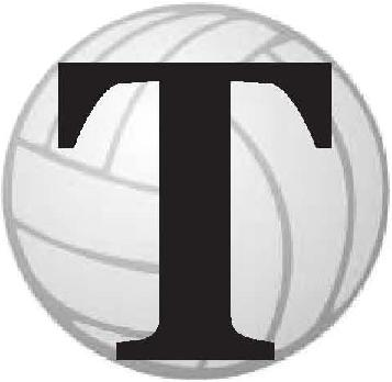 Fit to a T Volleyball